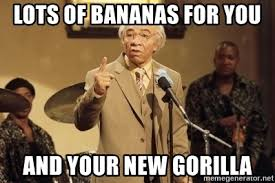 Norbit Memes - lots of bananas for you and your new gorilla mr wong norbit