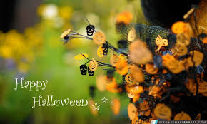 halloween hd wallpapers 2016 halloween pinterest halloween