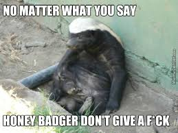 Honey Badger Meme - honey badger by austinifighter meme center