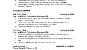 resume controller resumes graceful u201a alluring controller resumes