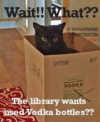 Friday Memes - friday memes are coming back savannah s paw tracks