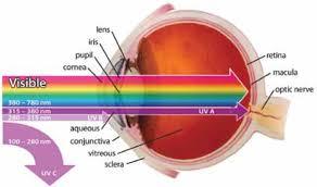 light streaks after cataract surgery retinal light exposure after cataract surgery what are the risks