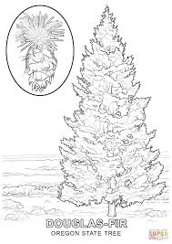 oregon state tree coloring page free printable coloring pages