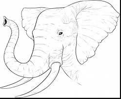 outstanding elephant face drawing with africa coloring pages