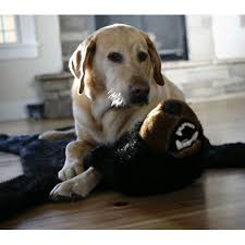 carsten u0027s plush black bear rug furrypartners