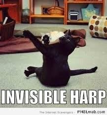 Invisible Cat Memes - 5 invisible harp cat meme pmslweb