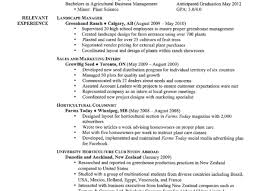 how to make new resume resume how to build a strong resume awesome proper resume how to