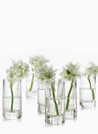 Mini Bud Vases 2 X 4in Clear Glass Cylinder Set Of 4 Wedding