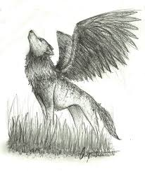 sketch winged wolf by wolfylittleartist on deviantart