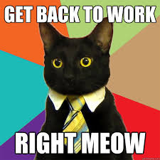Back To Work Meme - get back to work cat meme cat planet cat planet