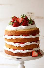 best 25 strawberry whipped cream cake ideas on pinterest