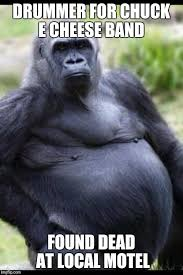 Gorilla Memes - fat gorilla memes imgflip
