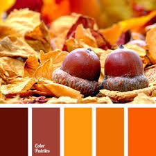 bright orange color color room decoration halloween color