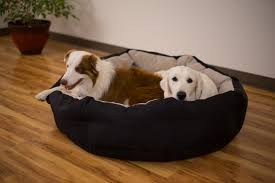 Best Dog Bed For Chewers Deep Den Dog Bed