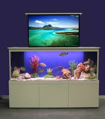 How To Make Fish Tank Decorations At Home 30 Best Aquarium Décor Using Freshwater Images On Pinterest