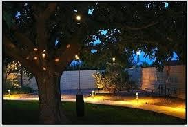 Spotlight Landscape Lighting Brinkmann Led Low Voltage Landscape Spotlight Low Voltage Led Path