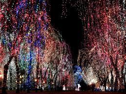 denver parade of lights 2017 denver holiday lights brighten up the holiday season