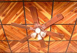 Ceiling Fan Suspended Ceiling by Drop Ceiling Tiles Home Lighting Insight
