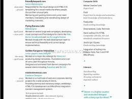 successful resume templates resume excellent resume example entertain best resume template