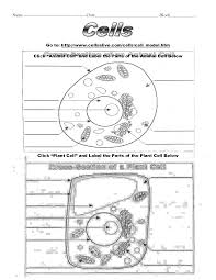 plant cell coloring sheet pdf u2013 download free utilities software