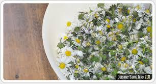 cuisiner les fleurs cuisine bio en mai je cuisine les fleurs cuisine saine