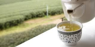 Teh Putih teh putih jenis terbaru yang paling sehat merdeka