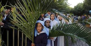 palm fronds for palm sunday palm sunday and the search for a political the daily caller