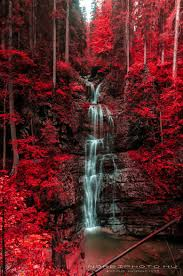 Black Forest Waterfall Window 1 Untitled Waterfall And Blazing Red Autumn Forest Austria By