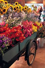 ordering flowers tips for ordering flowers flower ordering tips ideas beneva