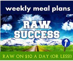 raw food reset 21 day raw cleanse meal plan meals 21st and food