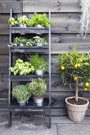 100 kitchen herb garden ideas hydroponic herb garden