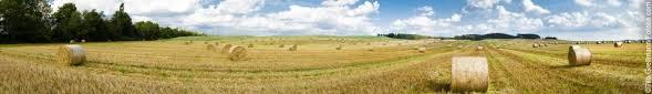 zahlungsansprüche landwirtschaft direktzahlungen für landwirtschaftliche betriebe hess