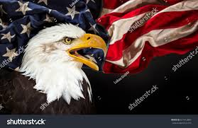 Bald Eagle And American Flag North American Bald Eagle American Flag Stock Photo 671412883