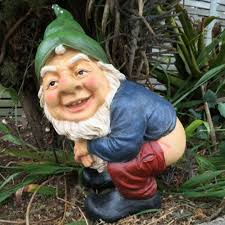46 best garden gnomes warning content images on