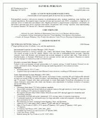Wireless Project Manager Resume Account Manager Resume Objective Template Design