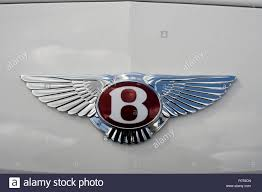 bentley sports car white close up of a winged bentley motors insignia on a white bentley