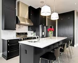 Kitchen With Black Cabinets 250 Best Magnificent Kitchen Decoration Images On Pinterest