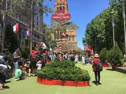 Christmas Trees And Decorations Melbourne by The Christmas Rush U2013 Alicia U0027s Perception