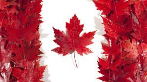 why is the maple leaf important to canada reference com