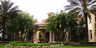 landscaping tampa properties for over 28 years call 813 413 6325