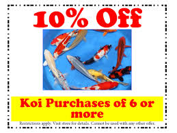 in store coupons pond market