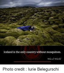 Iceland Meme - iceland is the only country without mosquitoes weird world photo