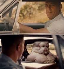 Fast And Furious Meme - see you again graham graham know your meme