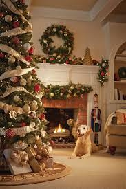 Fresh Cut Christmas Trees At Menards by Martha Stewart Christmas Trees Home Depot Christmas Lights