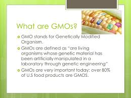Gmos The Pros And Cons By George Roy Period Ppt Video Online Download