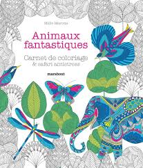 Livre Animaux fantastiques Carnet de coloriage  safari antistress