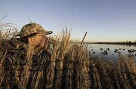 Natural Hunting Blinds Fellows Lake Duck Hunters Will Need To Supply Own Blinds