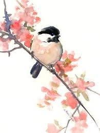 watercolor tutorial chickadee chickadee watercolor птицы pinterest watercolor paintings