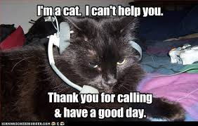 Can I Help You Meme - call center rejection lolcats lol cat memes funny cats
