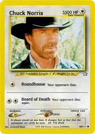 Chuck Norris Pokemon Memes - absolute best collection of chuck norris jokes chuck norris